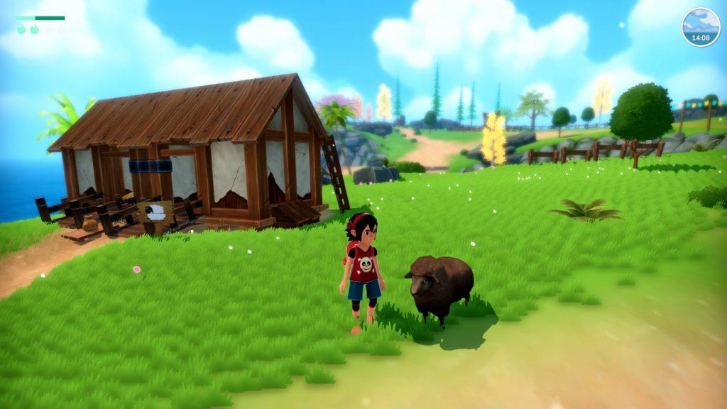 Koa et un mouton noir